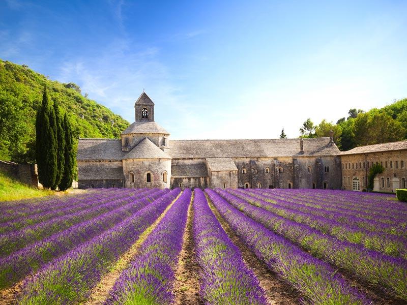 Sénanque Abbey, Provence