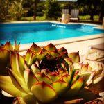 Holiday Villa in Southwest France La Beaujardine